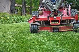 Vedligeholdelse af græsplænen